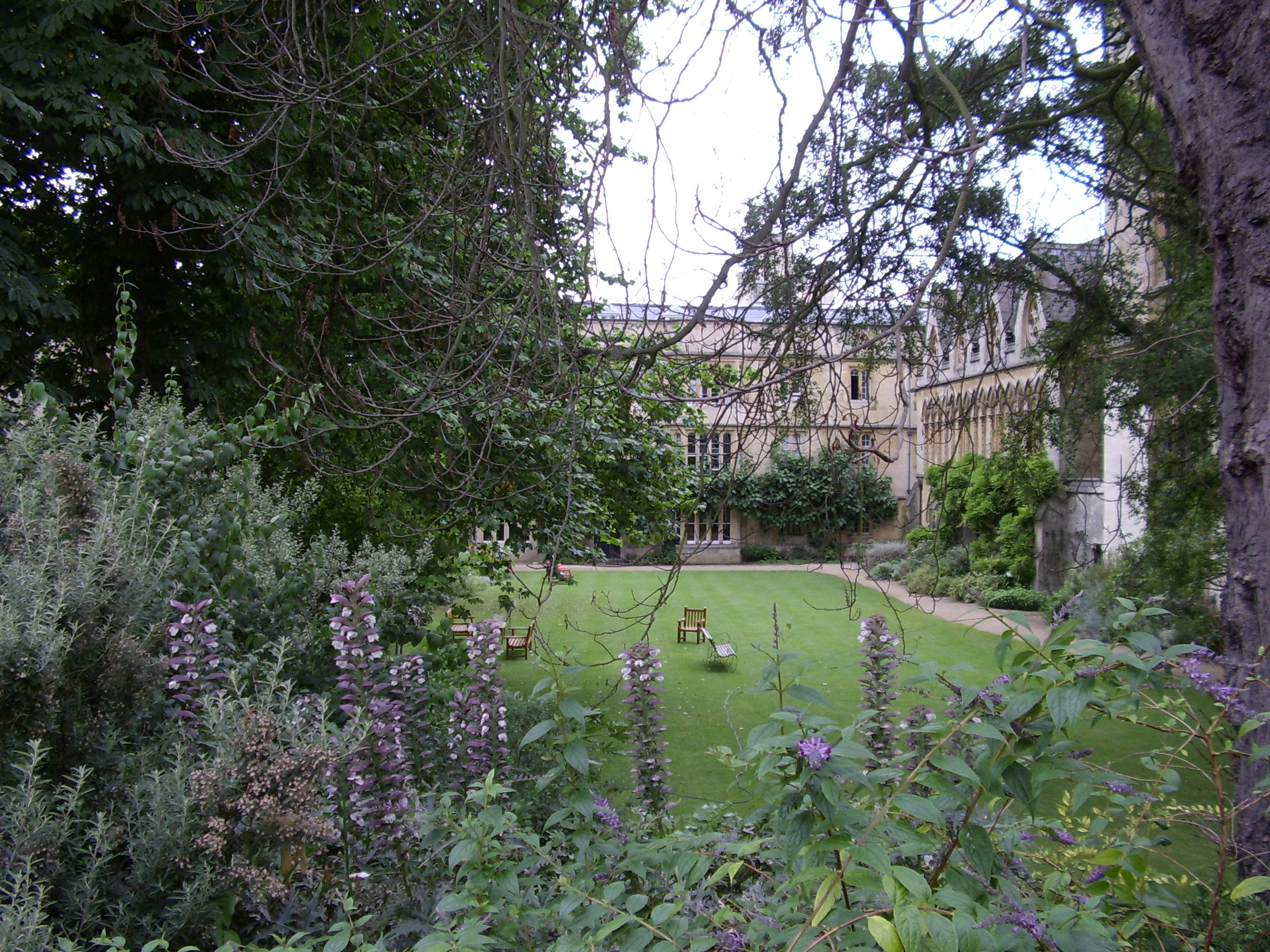 Exeter College, Oxford, UK. Fellows' Garden. (c) Marcel Aubron-Bülles