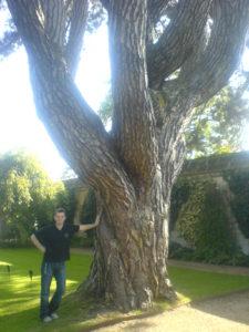 Marcel Aubron-Bülles, the Tolkienist, besides the Pinus Nigra at Oxford Botanical Garden. Tolkiens favourite tree